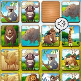 Matching Zoo