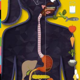 O Corpo Humano por Tinybop